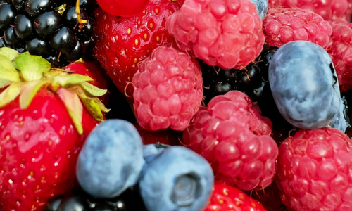 Mixed Berries For Making Jam In A Bread Maker Image